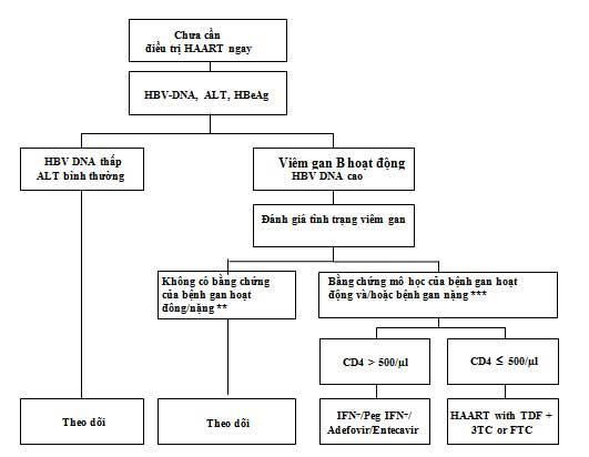 Điều trị bệnh nhân đồng nhiễm HIV/HBV khi chưa có chỉ định HAART