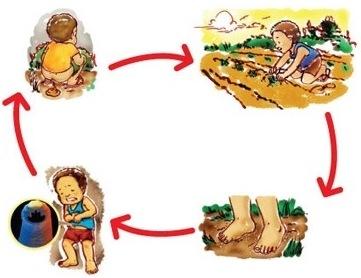 Điều trị giun sán và ký sinh trùng đường ruột trẻ em