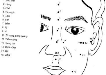 Phương pháp châm mặt và mũi (diện châm và tỵ châm)