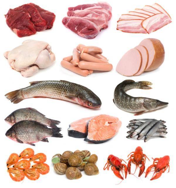 Cá là một thực phẩm hoàn hảo để phòng chống bệnh loãng xương