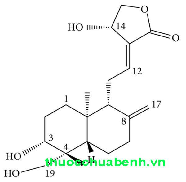 Công thức hóa học của Andrographolide