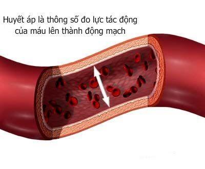 Huyết áp là áp lực máu trong động mạch