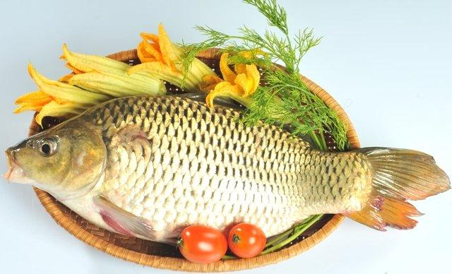 Vai trò dinh dưỡng của Thịt, cá, thủy sản với trẻ em