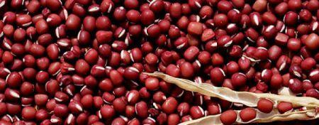 Quả đậu đỏ nhỏ hạt ( xích tiểu đậu)
