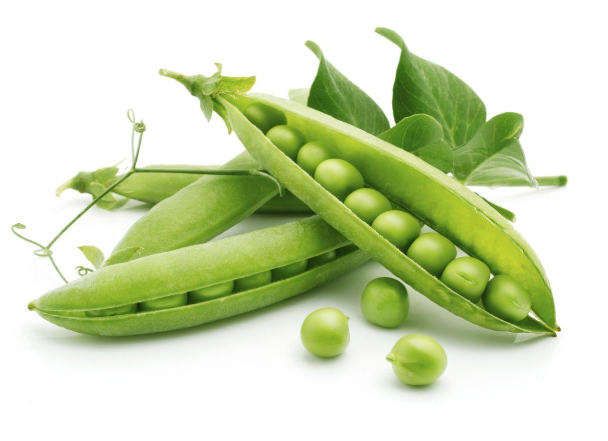 Hạt đậu xanh tác dụng thanh nhiệt, giải độc