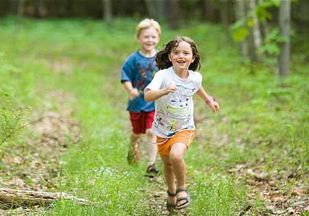Ngộ nhận: Buổi sáng tinh mơ đi dạo trong rừng rất tốt?