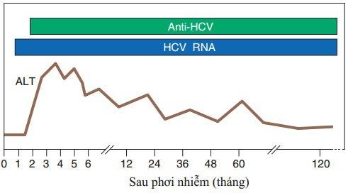 Triệu chứng xét nghiệm viêm gan C