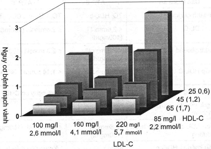 Chẩn đoán và điều trị rối loạn Lipid máu