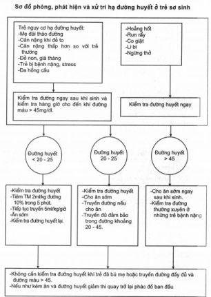 Sơ đồ phòng, phát hiện và xử trí hạ đường huyết ở trẻ sơ sinh
