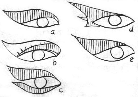 Trang điểm mắt phù hợp với từng kiểu mắt