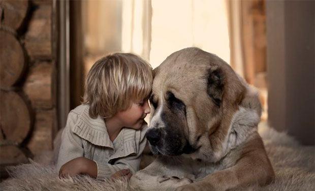 Hình ảnh trẻ em và vật nuôi